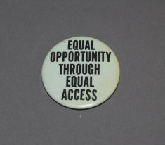 Equal Opportunity Through Equal Access button