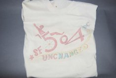 504 unchanged t-shirt disability history america