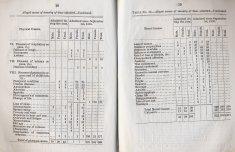 typed charted asylum demographics